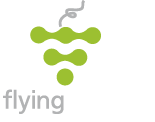 Flying Wines